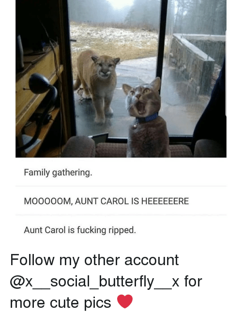 Cute, Family, and Fucking: Family gathering  MOooOOM, AUNT CAROL IS HEEEEEERE  Aunt Carol is fucking ripped. Follow my other account @x__social_butterfly__x for more cute pics ❤