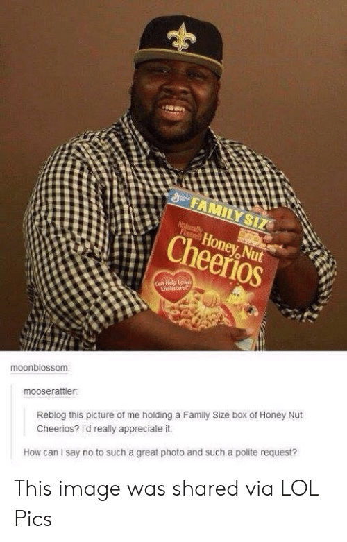 naturally: FAMILY SIZ  Naturally  FLored  Honey Nut  Cheerios  Can Help Lower  Cholesterol  moonblossom  mooserattler  Reblog this picture of me holding a Family Size box of Honey Nut  Cheerios? I'd really appreciate it.  How can I say no to such a great photo and such a polite request? This image was shared via LOL Pics