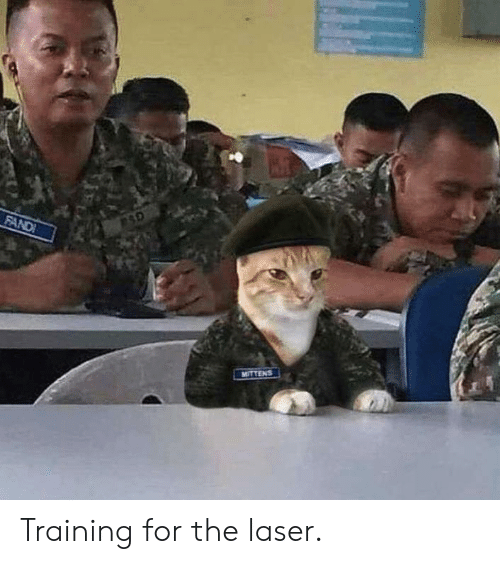 Laser, For, and Training: FAND  MITTENS Training for the laser.