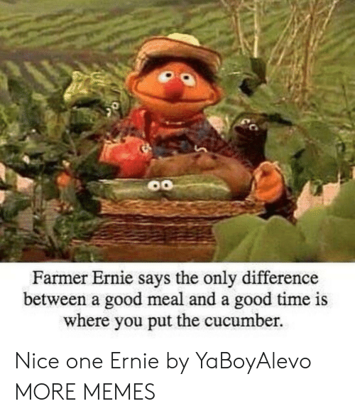 Ays: Farmer Ernie s  ays the only difference  between a good meal and a good time is  where you put the cucumber. Nice one Ernie by YaBoyAlevo MORE MEMES