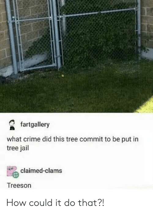 Claimed: fartgallery  what crime did this tree commit to be put in  tree jail  claimed-clams  Treeson How could it do that?!