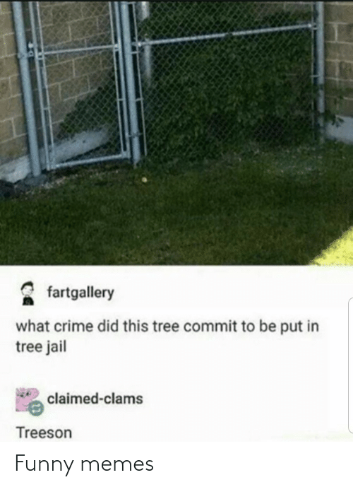 funny memes: fartgallery  what crime did this tree commit to be put in  tree jail  claimed-clams  Treeson Funny memes
