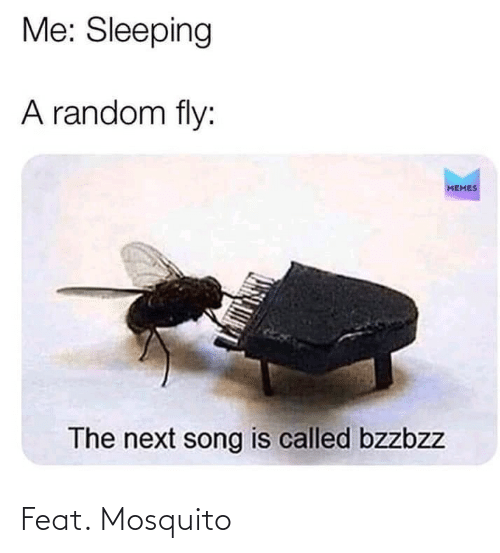 feat: Feat. Mosquito