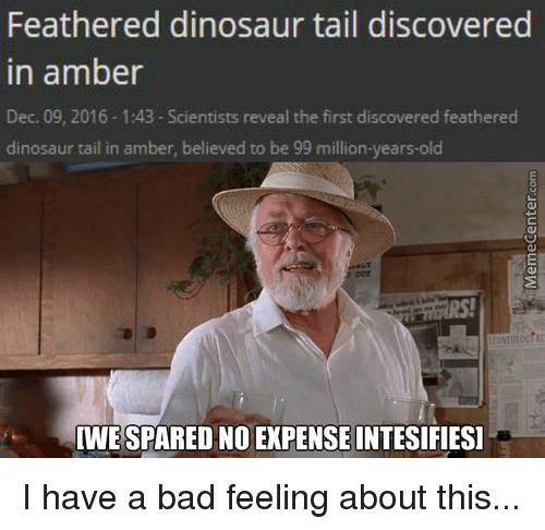Dinosaur, Memes, and Dinosaurs: Feathered dinosaur tail discovered  in amber  Dec. 09, 2016-1:43 Scientists reveal the first discovered feathered  dinosaur tail in amber, believed to be 99 million-years-old  WESPARED NO EXPENSE INTESIFIESI I have a bad feeling about this...