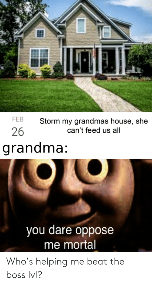 Oppose: FEB  Storm my grandmas house, she  26  can't feed us all  grandma:  you dare oppose  me mortal Who's helping me beat the boss lvl?