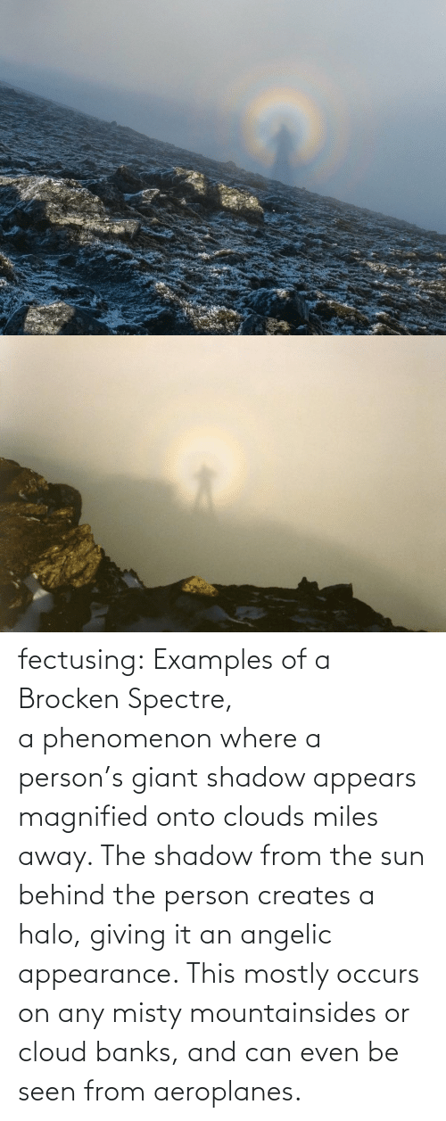 Miles: fectusing: Examples of a Brocken Spectre, a phenomenon where a person's giant shadow appears magnified onto clouds miles away. The shadow from the sun behind the person creates a halo, giving it an angelic appearance. This mostly occurs on any misty mountainsides or cloud banks, and can even be seen from aeroplanes.