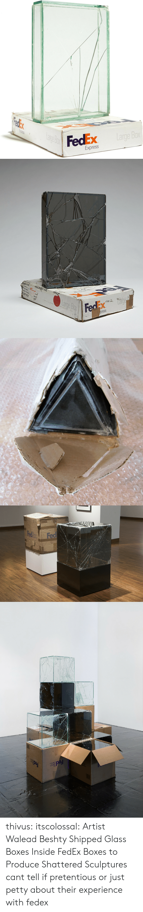 Petty, Pretentious, and Target: FedEx  0  Express   OLLB  ssal  shet  the  CHAV ZOLLBESCHAU  ARP thivus: itscolossal: Artist Walead Beshty Shipped Glass Boxes Inside FedEx Boxes to Produce Shattered Sculptures cant tell if pretentious or just petty about their experience with fedex