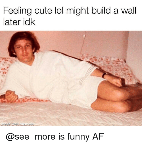 Funny Af: Feeling cute lol might build a wall  later idk  made with mematic @see_more is funny AF