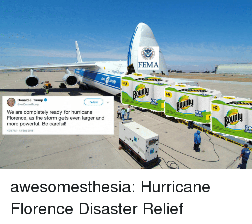 Tumblr, Blog, and Http: FEMA  112  our  112  Donald J. Trump  @realDonaldTrump  ou  Follow  -12  We are completely ready for hurricane  Florence, as the storm gets even larger and  more powerful. Be careful!  4:39 AM-13 Sep 2018  goin awesomesthesia:  Hurricane Florence Disaster Relief