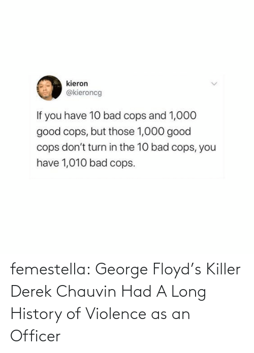officer: femestella: George Floyd's Killer Derek Chauvin Had A Long History of Violence as an Officer