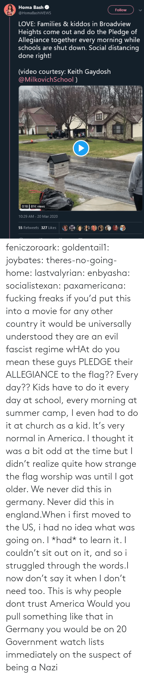 Until I: feniczoroark:  goldentail1:  joybates:  theres-no-going-home:  lastvalyrian:  enbyasha:  socialistexan:  paxamericana: fucking freaks       if you'd put this into a movie for any other country it would be universally understood they are an evil fascist regime    wHAt do you mean these guys PLEDGE their ALLEGIANCE to the flag?? Every day??   Kids have to do it every day at school, every morning at summer camp, I even had to do it at church as a kid. It's very normal in America. I thought it was a bit odd at the time but I didn't realize quite how strange the flag worship was until I got older.    We never did this in germany. Never did this in england.When i first moved to the US, i had no idea what was going on. I *had* to learn it. I couldn't sit out on it, and so i struggled through the words.I now don't say it when I don't need too.   This is why people dont trust America    Would you pull something like that in Germany you would be on 20 Government watch lists immediately on the suspect of being a Nazi