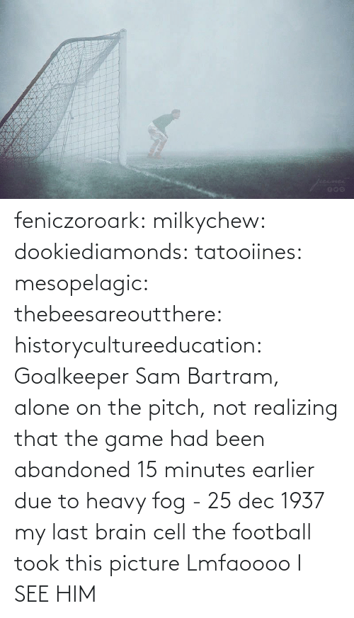 Brain: feniczoroark:  milkychew: dookiediamonds:  tatooiines:   mesopelagic:  thebeesareoutthere:  historycultureeducation: Goalkeeper Sam Bartram, alone on the pitch, not realizing that the game had been abandoned 15 minutes earlier due to heavy fog - 25 dec 1937 my last brain cell   the football took this picture    Lmfaoooo      I SEE HIM