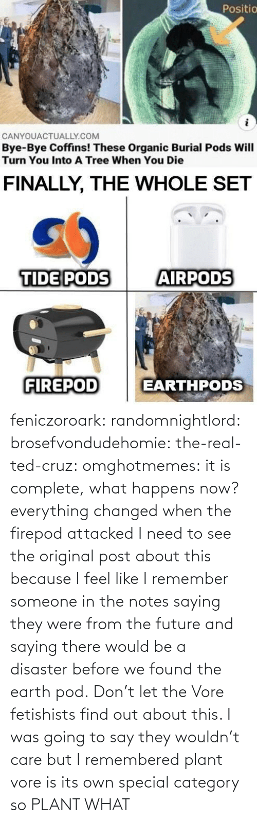 someone: feniczoroark:  randomnightlord:  brosefvondudehomie: the-real-ted-cruz:  omghotmemes: it is complete, what happens now? everything changed when the firepod attacked    I need to see the original post about this because I feel like I remember someone in the notes saying they were from the future and saying there would be a disaster before we found the earth pod.    Don't let the Vore fetishists find out about this.    I was going to say they wouldn't care but I remembered plant vore is its own special category so   PLANT WHAT