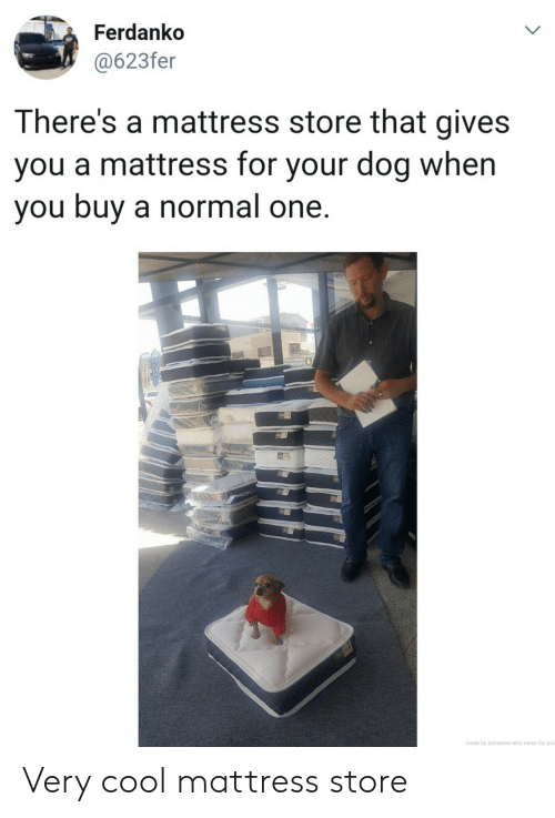 Mattress: Ferdanko  @623fer  There's a mattress store that gives  you a mattress for your dog when  you buy a normal one.  made by someone who cares for you Very cool mattress store