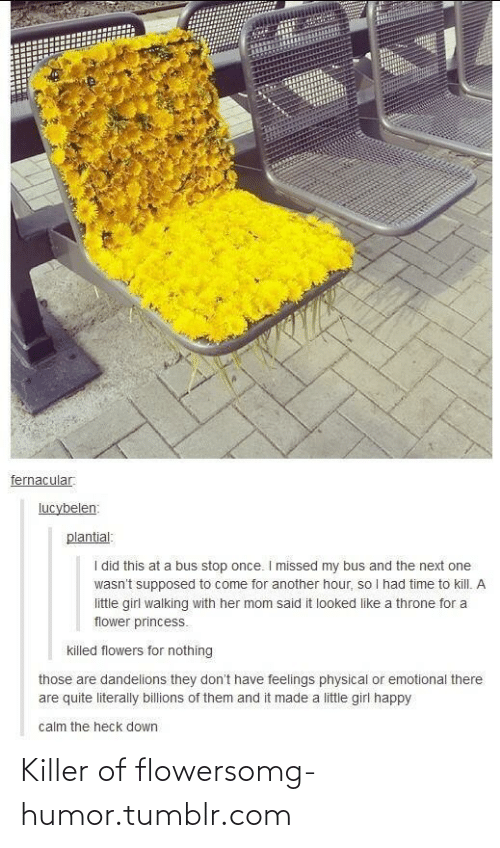 Time To Kill: fernacular.  lucybelen:  plantial:  I did this at a bus stop once. I missed my bus and the next one  wasn't supposed to come for another hour, so I had time to kill. A  little girl walking with her mom said it looked like a throne for a  flower princess.  killed flowers for nothing  those are dandelions they don't have feelings physical or emotional there  are quite literally billions of them and it made a little girl happy  calm the heck down Killer of flowersomg-humor.tumblr.com