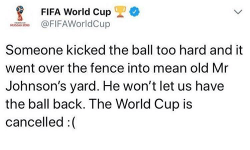 johnsons: *  FIFA World Cup  FIFAWorldCup  Someone kicked the ball too hard and it  went over the fence into mean old Mr  Johnson's yard. He won't let us have  the ball back. The World Cup is  cancelled :(