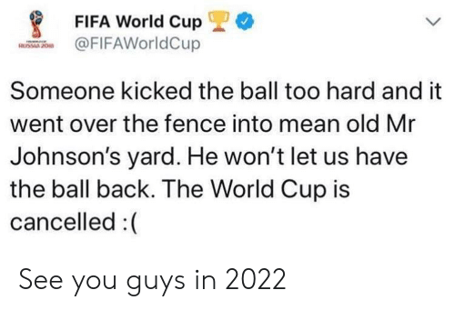 johnsons: *  FIFA World Cup  FIFAWorldCup  Someone kicked the ball too hard and it  went over the fence into mean old Mr  Johnson's yard. He won't let us have  the ball back. The World Cup is  cancelled :( See you guys in 2022