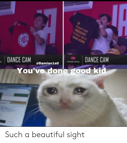 Beautiful, Good, and Dance: FIGHT FOR  FREEDOM  STAND WIT  ONG KON  ӨЕ  DANCE CAM  CEDARS SINAL  @Damian1a0  DANCE CAM  AL  You've done good kid Such a beautiful sight