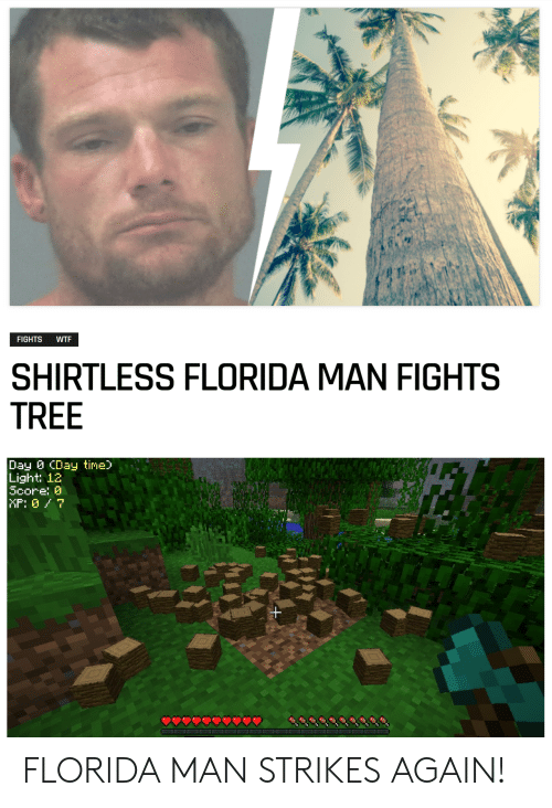 Florida Man, Wtf, and Florida: FIGHTS  WTF  SHIRTLESS FLORIDA MAN FIGHTS  TREE  Day CDay time)  Light: 12  Score: 0  MP: 07 FLORIDA MAN STRIKES AGAIN!