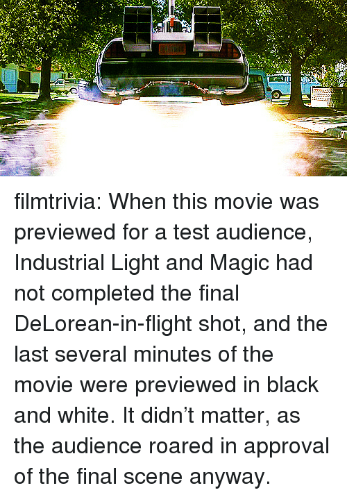 Final Scene: filmtrivia:  When this movie was previewed for a test audience, Industrial Light and Magic had not completed the final DeLorean-in-flight shot, and the last several minutes of the movie were previewed in black and white. It didn't matter, as the audience roared in approval of the final scene anyway.