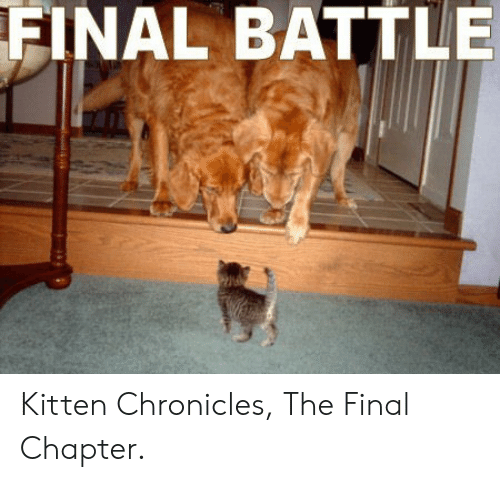 Kitten, Chronicles, and Final: FINAL  BATTLE Kitten Chronicles, The Final Chapter.