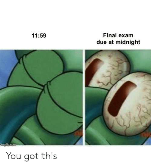 Due: Final exam  11:59  due at midnight  imgflip.com You got this
