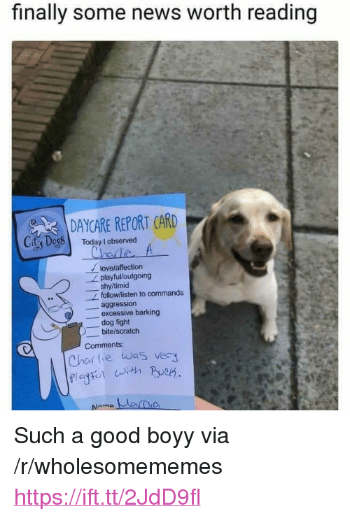 "News, Good, and Scratch: finally some news worth reading  DAYCARE REPORT CARD  CitSDessl  Today I observed  lovelaffection  shy/timid  aggression  playful/loutgoing  follow/listen to commands  -excessive barking  dog fight  bite/scratch  Comments  Chor lie was very <p>Such a good boyy via /r/wholesomememes <a href=""https://ift.tt/2JdD9fl"">https://ift.tt/2JdD9fl</a></p>"