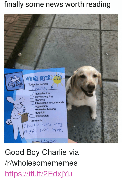 "Charlie, Love, and News: finally some news worth reading  DAYCARE REPORT CARD  City Dog8 Today I observed  love/affection  playful/outgoing  shy/timid  follow/listen to commands  aggression  excessive barking  dog fight  )-bite/scratch  Comments:  Char lie was ver <p>Good Boy Charlie via /r/wholesomememes <a href=""https://ift.tt/2EdxjYu"">https://ift.tt/2EdxjYu</a></p>"
