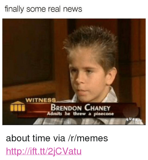 "Memes, News, and Http: finally some real news  WITNESS  BRENDON CHANEY  Admits he threw a pinecone  SUR <p>about time via /r/memes <a href=""http://ift.tt/2jCVatu"">http://ift.tt/2jCVatu</a></p>"