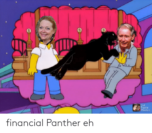 Financial: financial Panther eh