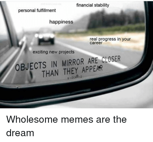 Fulfillment: financial stalbility  personal fulfillment  happiness  real progress in your  career  exciting new projects  OBJECTS IN MIRROR ARE CLOSER  THAN THEY APPEAR Wholesome memes are the dream