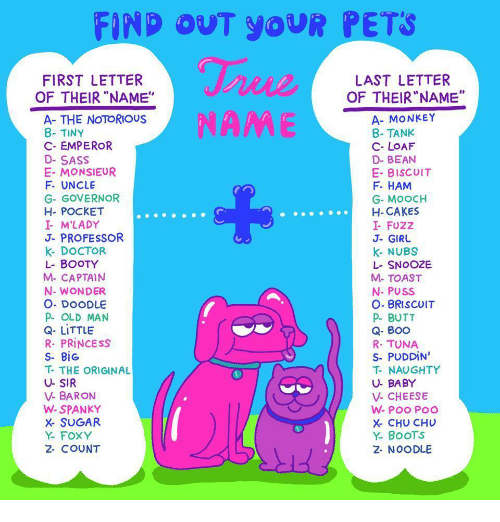 "Boo, Booty, and Butt: FIND OUT YoUR PETS  FIRST LETTER  LAST LETTER  OF THEIR""NAME""  OF THEIR ""NAME""  A- THE NOTORIOUS  8- TINY  C- EMPEROR  D-SASS  E- MONSIEUR  F. UNCLE  G- GOVERNOR  H- POCKET  I M'LADY  J- PROFESSOR  k- DOCTOR  L- BOOTY  M- CAPTAIN  N- WONDER  O. DOODLE  P OLD MAN  Q- LITTLE  R. PRİNCESS  S- BİG  T- THE ORIGINAL  U- SIR  V- BARON  W- SPANKY  X SUGAR  Y- FOXY  2- COUNT  A- MONKEY  8- TANK  C- LOAF  D- BEAN  E- BISCuIT  F. HAM  G- MoOCH  H-CAKES  I- FUZZ  J- GIRU  k- NUBS  L- SNOOZE  M- TOAST  N- PUSS  O- BRISCUIT  P- BUTT  Q- BOO  R- TUNA  S-PUDDİN'  T- NAUGHTY  U- BABY  V- CHEESE  X- CHU CHU  Y. BooTS  2- NOODLE"