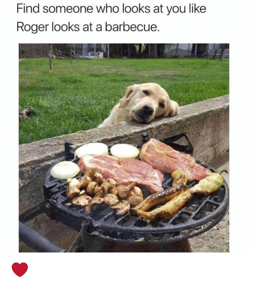 Roger, Who, and You: Find someone who looks at you like  Roger looks at a barbecue. ❤️