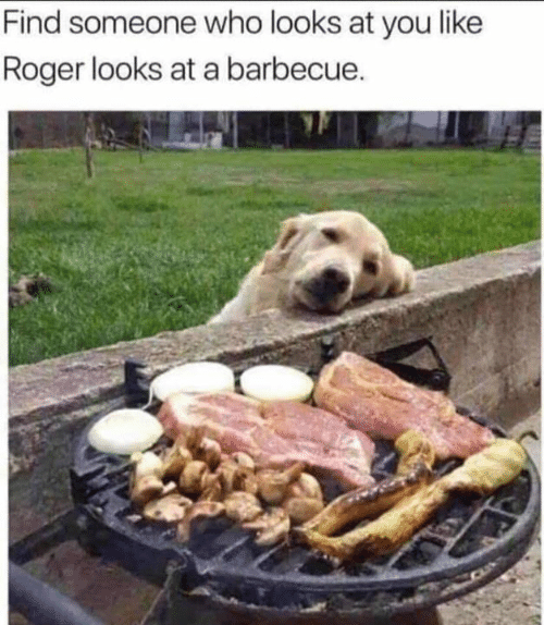 Roger: Find someone who looks at you like  Roger looks at a barbecue.