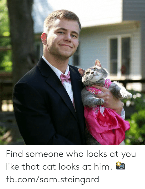 Dank, fb.com, and 🤖: Find someone who looks at you like that cat looks at him.  📸 fb.com/sam.steingard