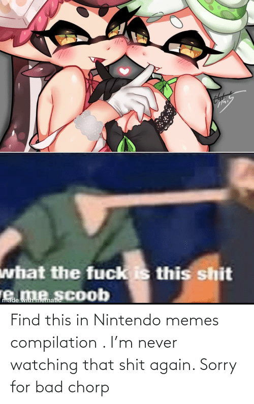 Memes Compilation: Find this in Nintendo memes compilation . I'm never watching that shit again. Sorry for bad chorp