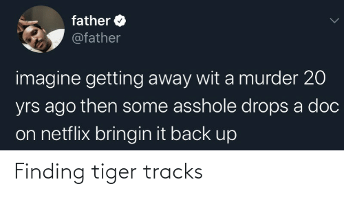 Finding: Finding tiger tracks