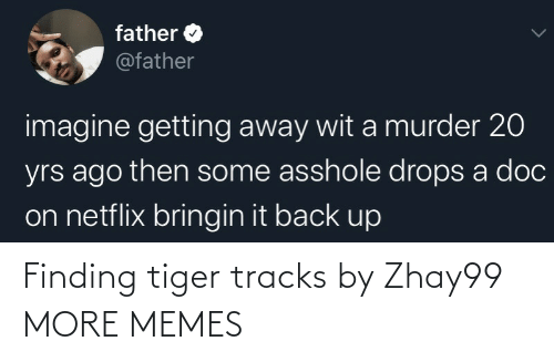 dank: Finding tiger tracks by Zhay99 MORE MEMES