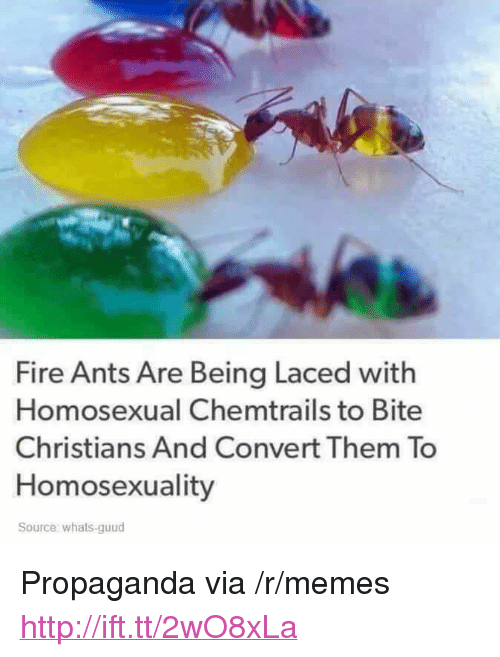 """chemtrails: Fire Ants Are Being Laced with  Homosexual Chemtrails to Bite  Christians And Convert Them To  Homosexuality  Source: whats-guud <p>Propaganda via /r/memes <a href=""""http://ift.tt/2wO8xLa"""">http://ift.tt/2wO8xLa</a></p>"""
