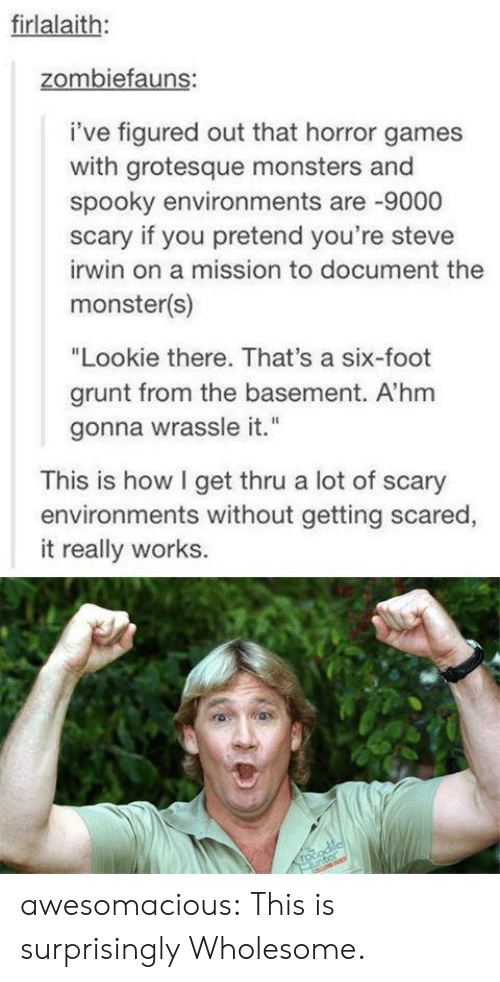 "Wholesome: firlalaith:  zombiefauns:  i've figured out that horror games  with grotesque monsters and  spooky environments are -9000  scary if you pretend you're steve  irwin on a mission to document the  monster(s)  ""Lookie there. That's a six-foot  grunt from the basement. A'hm  gonna wrassle it.""  This is how I get thru a lot of scary  environments without getting scared,  it really works.  rocodilcl  unter awesomacious:  This is surprisingly Wholesome."