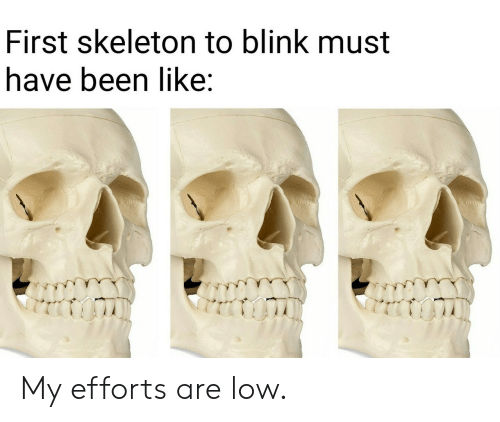 Been, Blink, and First: First skeleton to blink must  have been like: My efforts are low.