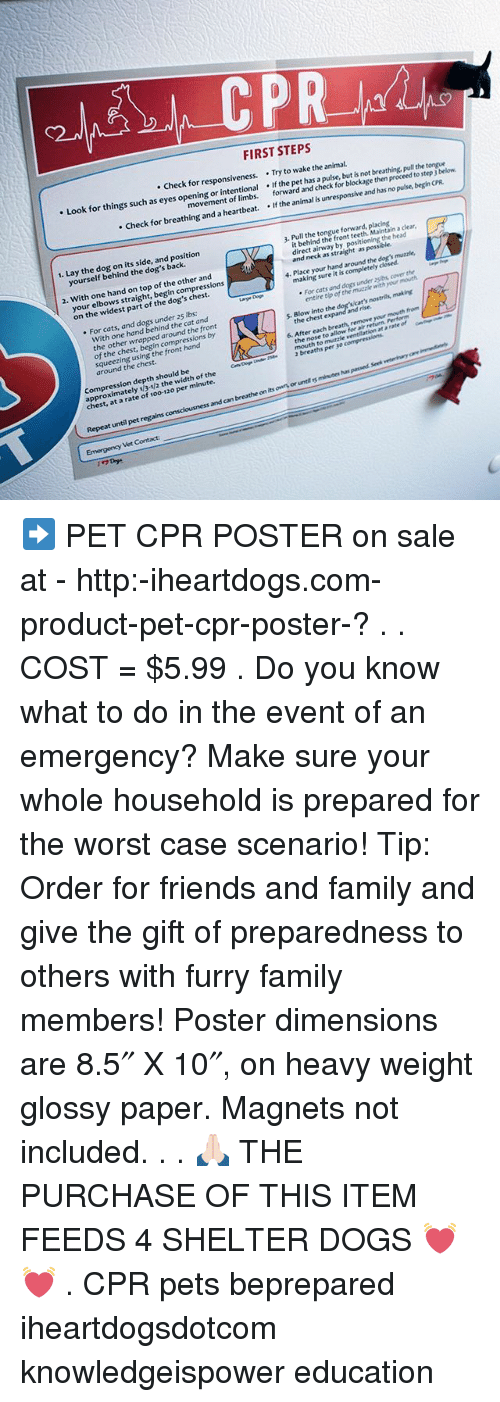 cpr paper Poster dimensions are 85 x 10, on heavy weight glossy paper magnets not included.