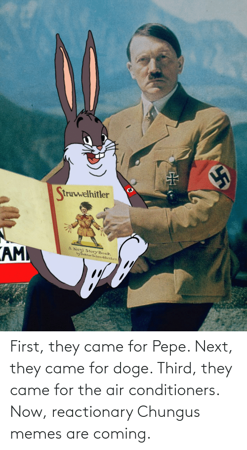 Memes Are Coming: First, they came for Pepe. Next, they came for doge. Third, they came for the air conditioners. Now, reactionary Chungus memes are coming.