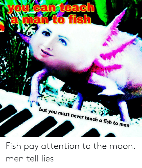 To The Moon: Fish pay attention to the moon. men tell lies