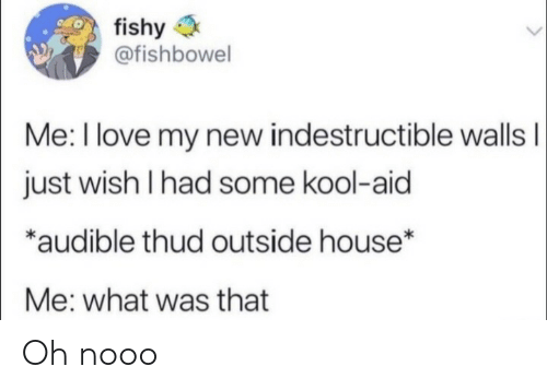 nooo: fishy  @fishbowel  Me: I love my new indestructible wallsI  just wish I had some kool-aid  *audible thud outside house*  Me: what was that Oh nooo