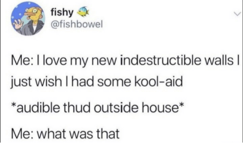 Aid: fishy  @fishbowel  Me: I love my new indestructible wallsI  just wish I had some kool-aid  *audible thud outside house*  Me: what was that