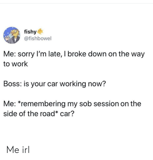 Sorry Im: fishy  @fishbowel  Me: sorry I'm late, I broke down on the way  to work  Boss: is your car working now?  Me: *remembering my sob session on the  side of the road* car? Me irl