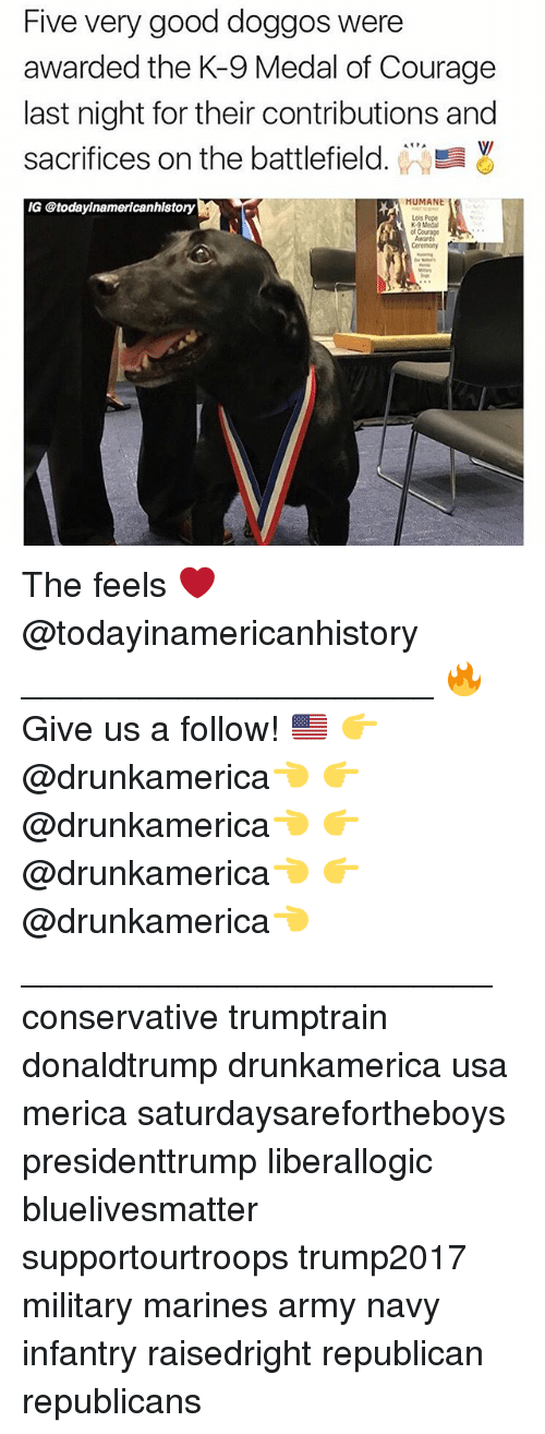 k-9: Five very good doggos were  awarded the K-9 Medal of Courage  last night for their contributions and  sacrifices on the battlefield. WW  V/  MUMANE  ry  Lois Pope  K-9 Medal  ot Courge The feels ❤️ @todayinamericanhistory _____________________ 🔥Give us a follow! 🇺🇸 👉@drunkamerica👈 👉@drunkamerica👈 👉@drunkamerica👈 👉@drunkamerica👈 ________________________ conservative trumptrain donaldtrump drunkamerica usa merica saturdaysarefortheboys presidenttrump liberallogic bluelivesmatter supportourtroops trump2017 military marines army navy infantry raisedright republican republicans