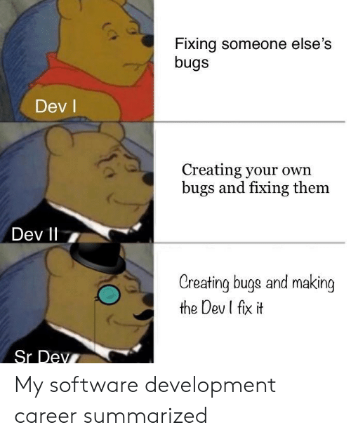 software development: Fixing someone else's  bugs  Dev l  Creating your own  bugs and fixing them  Dev 11 7  Creating buge and making  the Dev I fix it  Sr Dev My software development career summarized