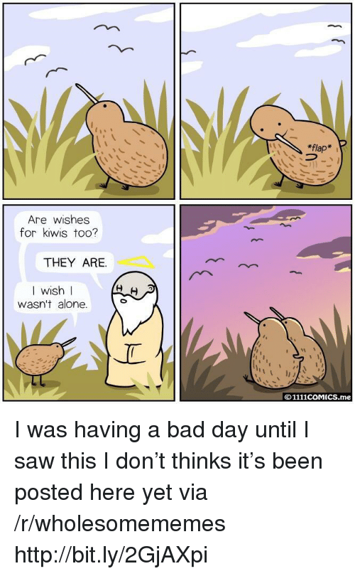 Day Until: *flap  Are wishes  for kiwis too?  THEY ARE.  I wish l  WIS  wasn't alone.  ©1111COMICS.me I was having a bad day until I saw this I don't thinks it's been posted here yet via /r/wholesomememes http://bit.ly/2GjAXpi